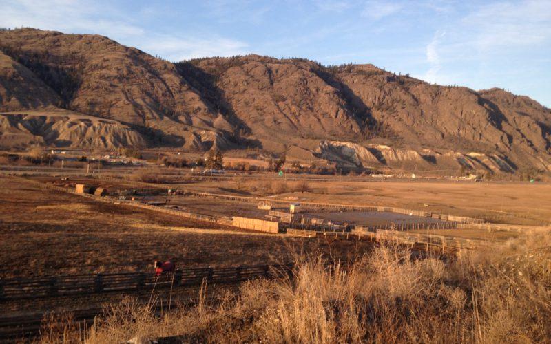 Monte Creek Acreage