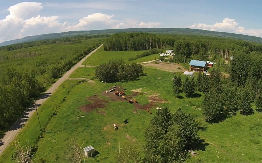 1200 Willis Road >Chetwynd | 630 Acres | Great Rec Property or Horse Ranch