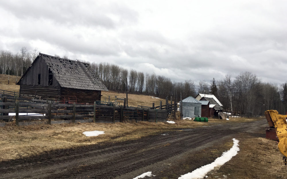 Miocene Ranch Ltd.  >Williams Lake, Cattle Ranch | 1396 Acres/13 titles