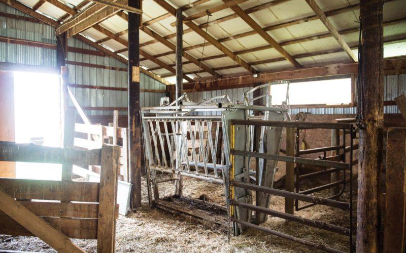 Bar M Ranch