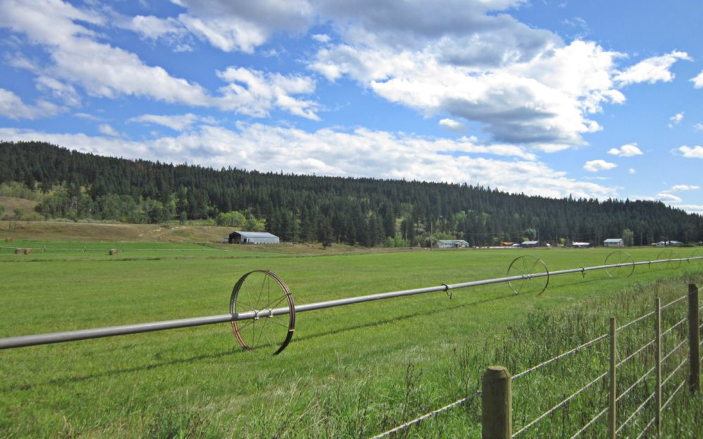 Marguerite Ranches Ltd. > 9392 Lavally Road, Quesnel | 828 Acres | Alfalfa Hay | Fraser River Frontage | Potential Cow Calf Operation