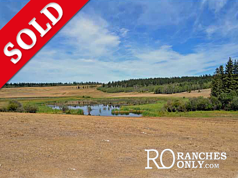 3536 Dog Creek Road > Williams Lake |167 Acres| Ample Water, Open Pasture, Timber Value, Large Buildings