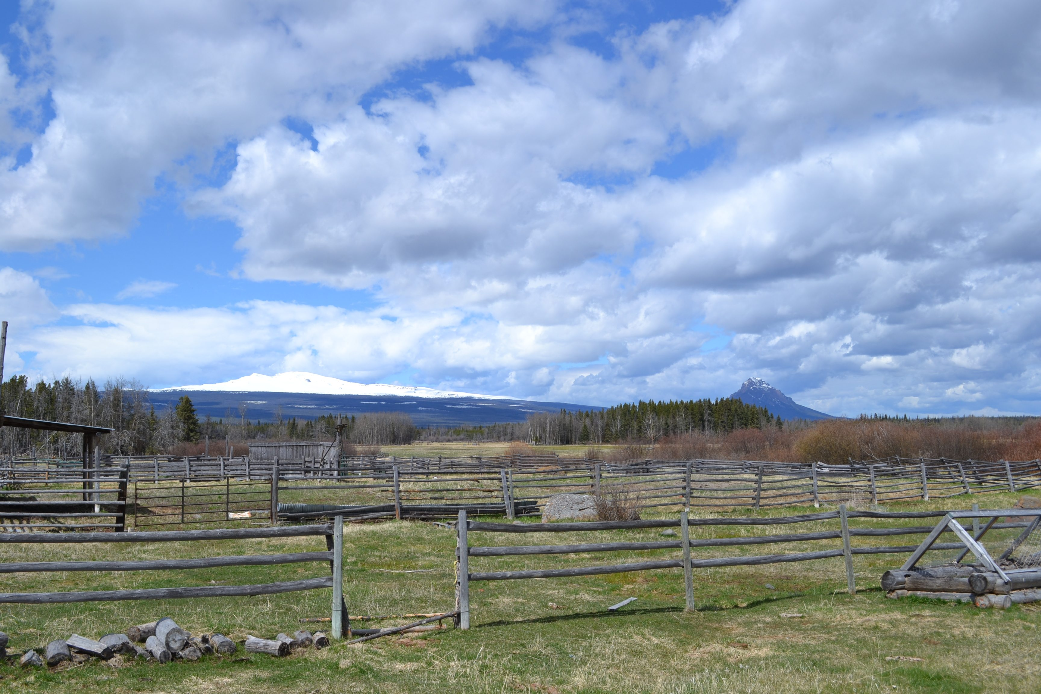 Dean River Ranch >  West Chilcotin | 650 Acres | Off Grid Log Home | 225 Acres Irrigated Hay Production | Workshop + Cabin | Dean River Frontage