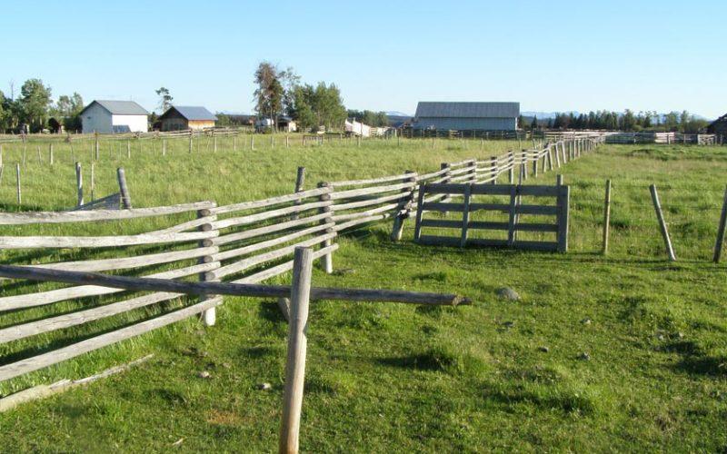 Guichon Creek Ranch