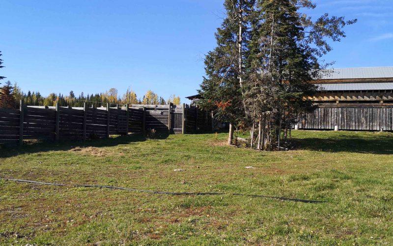 kole Creek Bison Ranch